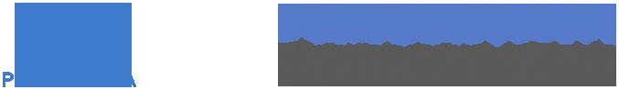Pneumavita Logo